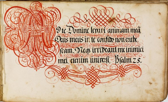 Calligraphic letterforms by Johann Hering, 1620s